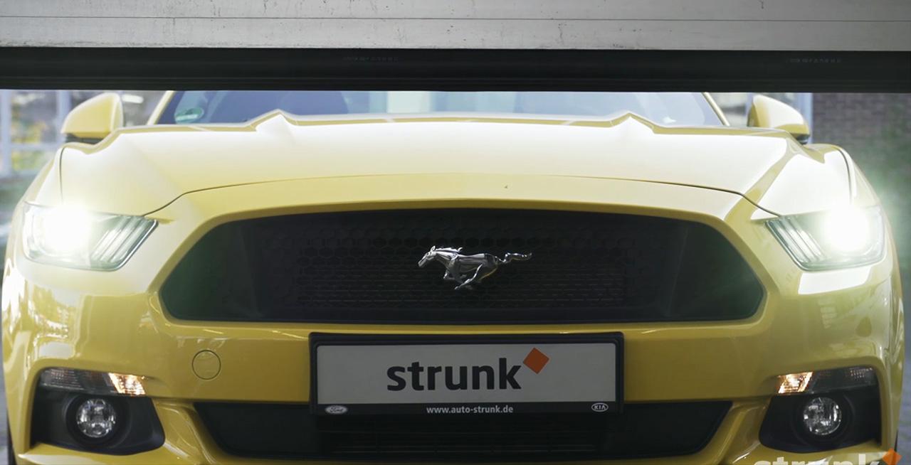 ausbildung auto strunk gmbh auto strunk gmbh. Black Bedroom Furniture Sets. Home Design Ideas